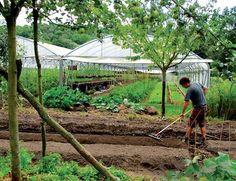 micro-ferme agriculture bio écosystème modèle agriculture