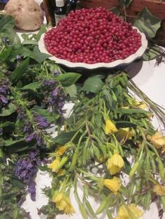 How to Make Autumn Olive Berry (Autumnberry) Jam