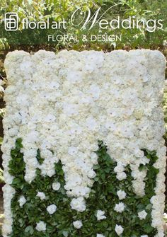Flower Wall by Floral Art White phalaenopsis orchids, white roses, and white hydrangea for end of summer wedding at Bel Air Hotel.