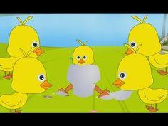 Five Little Ducks Nursery Rhyme - YouTube