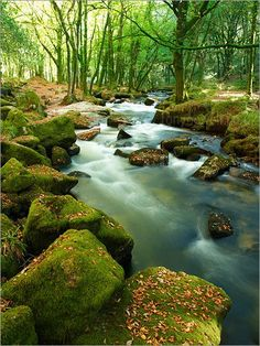 Golitha Falls, Bodmin Moor, Cornwall. This is my thinking place when I have a lot on my mind.  Beautiful.