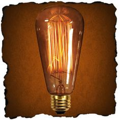 Vintage looking light bulbs- cheap! Perfect for so many steampunk projects several vintage styles! 1000bulbs.com. 60 Watt - Vintage Antique Light Bulb - A19
