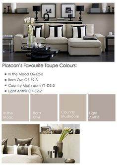 Taupe options