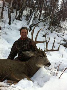 Mule deer hunt in Colorado