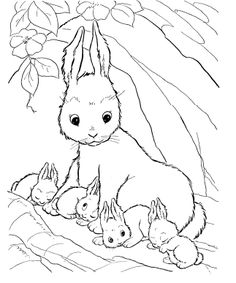 Rabbits Rabbits Who Are Parenting Coloring Pages