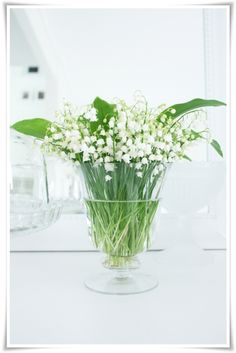 lily-of-the-valley....my favorite flower