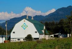 """10-11-14 Photo Challenge:  Barn Quilt on the Obrist barn along the Tillamook Co., OR Quit Trail.  The block is called """"Far West"""".  The original owner of the farm, a Swiss immigrant,  milked 50 Jerseys, a large herd for the early 1900's.  This milk barn was built in 1941 and is now used for calf raising."""