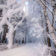 Road through the magical forest ~ Lapua, Finland. Photo by – All Pictures I Love Snow, Winter Love, Winter Snow, Winter Photography, Nature Photography, Poetry Photography, Travel Photography, Levitation Photography, Exposure Photography