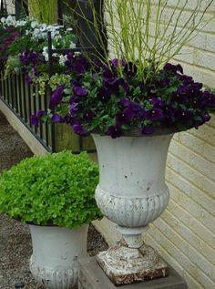 spring planter lettuce creative how-to garden