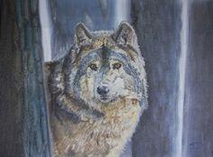 Wolf op de uitkijk.