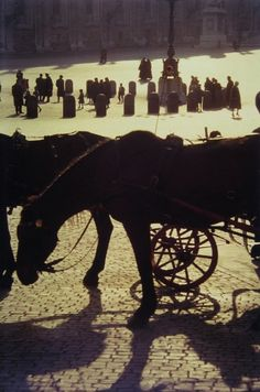 Saul Leiter: St. Peter's, Rome, 1959. 13 3/8 x 9 inches Cibachrome print; printed later