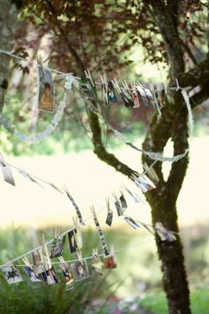 Lots of pictures!!!  I like how these are hung :) Morgan + Robert: A Woodland Oregon Wedding