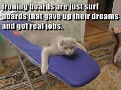 Ironing boards are Surf boards with a real jobs... https://cheezburger.com/9177952768
