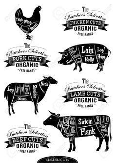 28104323-diagram-cut-carcasses-of-chicken-pig-cow-lamb-Stock-Photo-butcher-silhouette.jpg (919×1300)