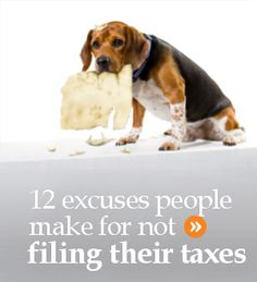 12 excuses people make about why they don't file their tax return in Canada. Some of these excuses can actually hurt your finances. Learn more. Us Tax, Dog Eating, Filing, Benefit, Finance, Canada, Money, People, Silver