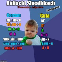 A Success Kid meme. Caption your own images or memes with our Meme Generator. Success Kid, Gaelic Words, Irish Language, 5th Class, World Languages, Study Tips, Christmas Art, Teaching Resources, Celtic