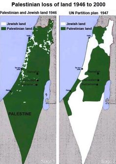 Problema Israel y Palestina