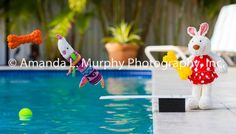 """Fun Wall Art - """"Daisy, the Diving Dachshund"""" Fine Art Photograph for Nursery, Kids room, Playroom, Whimsical art, Art for children of all ages, great for baby shower gifts!. Fine Art Photograph in various presentation formats and sizes; please see our product photos and select from the options list. Mat only options: - 4.5""""x7"""" Print in 8""""x10"""", white, acid-free mat. Signed by the artist. - 7""""x11"""" Print in 11""""x14"""", white, acid-free mat. Signed and numbered by the artist. Limited edition of..."""