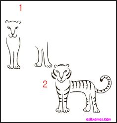 how to draw a tiger children   drawing   Draw animals for ...
