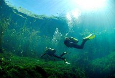 Marico Oog inland diving, photo by Andrew Woodburn National Anthem, Culture Travel, Fresh Water, Underwater, Diving, South Africa, Northern Lights, To Go, Journey
