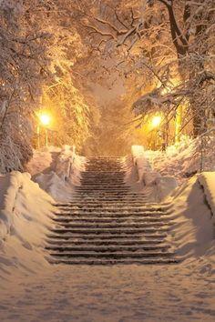 49 Super Ideas For Nature Paysage Hiver Winter Fairy, Winter Magic, Dark Winter, Winter Walk, Foto Picture, Winter Scenery, Winter Theme, Snow Scenes, Winter Pictures