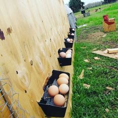 Roll out nest boxes would be great! I would add some sort of housing around these though to protect the eggs from the elements and predators that would want to eat them before I can get to them. Chicken Coop Designs, Easy Chicken Coop, Chicken Pen, Chicken Cages, Backyard Chicken Coops, Chicken Coop Plans, Building A Chicken Coop, Backyard Farming, Chickens Backyard