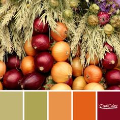 Fall Color Schemes, Fall Color Palette, Colour Pallete, Color Combinations, Color Palettes, Chocolate Brown Walls, Color Harmony, Colour Board, Color Theory