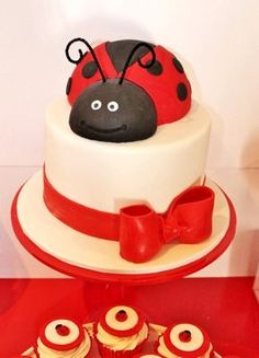 LADYBUG BIRTHDAY PARTY LADYBUG CAKE