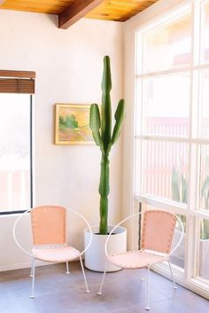 Wohnzimmer, Stilvoll Wohnen, Sukkulenten, Kakteen, Sessel, Arbeitszimmer,  Wohnungseinrichtung, Rund Ums Haus, Hohe Kakteen, Rosa Stühle, Retro Stühle,  ...