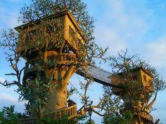 Cool Tree House: Cool Tree House With Hanging Bridge Design ~ gozetta.com Outdoor Inspiration
