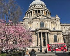 St Pauls in London. Have to love springtime.