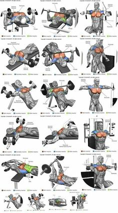 Chest workout at home for strength and mass |Chest Exercises for Men and Women. #fitness #MuscleFitness
