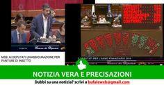 Attualità: #NOTIZIA #VERA #M5S: ai deputati unassicurazione per le punture di insetto  bufale.... (link: http://ift.tt/2ek2tWi )