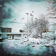 Manic Monday: #WinterWonderland | Streamzoo