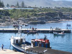 The main harbour - Hermanus, South Africa Provinces Of South Africa, South Afrika, Victoria Falls, Dream City, Rest Of The World, Zimbabwe, Countries Of The World, Fishing Boats, Cape Town