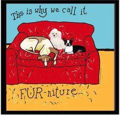 Fur-nature