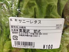 Romain Lettuce with purple Japanese label