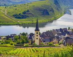 Rieslings to be cheerful: A marvellous meander up Germany¿s Mosel ...