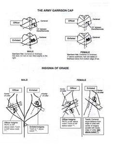JROTC Ranks | JROTC Insignia Diagram