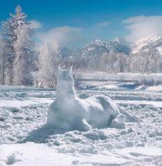 Schneemänner? Ach zu einfach...Lass mal ein Schneepferd bauen!
