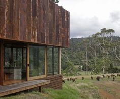 Coromandel corrugated iron home breaks with convention - Inside Home, Bunker, Treehouse, Rustic Interiors, Architects, Buildings, Design Ideas, Iron, House Design