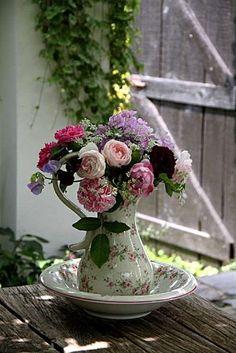 Roses Scepter'd Ile, Black Prince, Charles Rennie Mc Intosh, Jacques Cartier, Redouté et Salet  Phlox Lichtspel  Amni Majus  Nigelle de Damas  Pois de senteur Beaujolais et Chatsworth