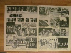 Donny Osmond and The Osmonds Brothers Two Page Vintage Clipping