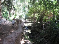 Go Explore Nature: Cooling Off Outside at the Ferndell Nature Museum - california