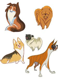 "First batch of dog requests! Here we got a sheltie, pug, boxer, corgi (welsh pembroke), and a chow chow. A lot of you asked for chows, which I really had fun drawing their endearing ""I AM DISAPPOINT FOREVER"" face. This was a pretty good idea! It sure beat my other idea of trying to dance the choreography to a kpop band I mean what. I'll tackle the next group later, cuz I needta shower."