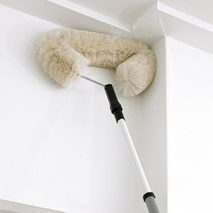 Extendable cob web duster - up to 5 feet long