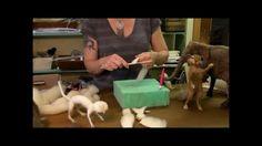 Sarafina Fiber Art Episode 3: Begin Sculpting