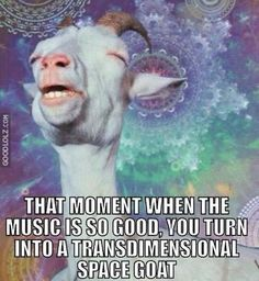 Electronic Dance Music #EDM Parties When You Transform Into Transdimensional Space Goats http://www.goodlolz.com/?p=3334