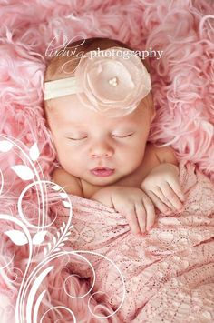 Pretty in pink; Newborn Baby Girl; *[Ludwig Photography]