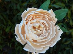 Paper Peony Stems - Small Paper Flower Peonies - Peonies for Bouquets or Arrangements -